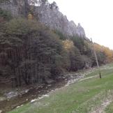 valea galbenului 1