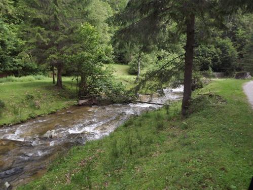 valea sadului