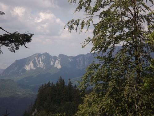 vedere munti