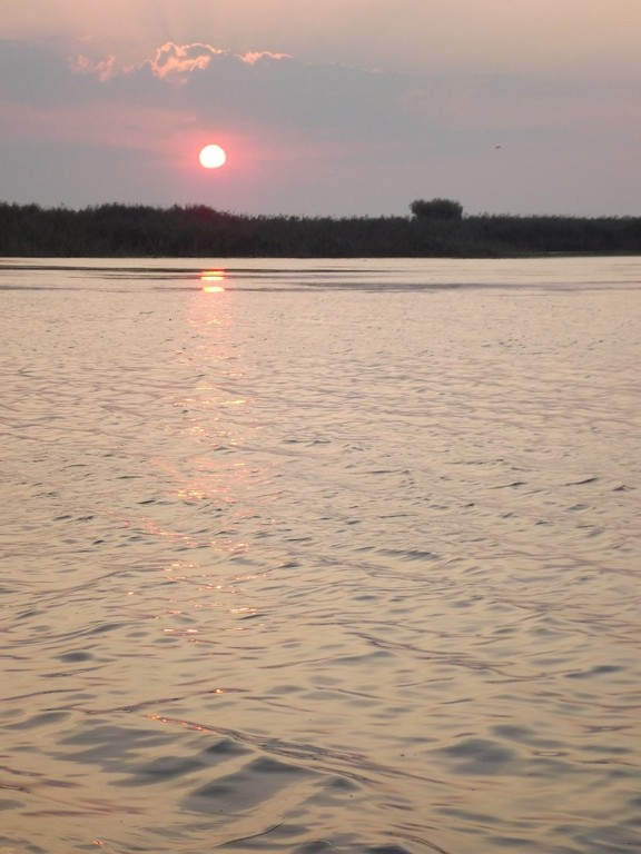 rasarit soare in Delta
