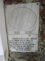 DSCF1854