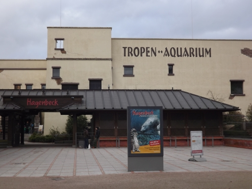 acvariul tropical
